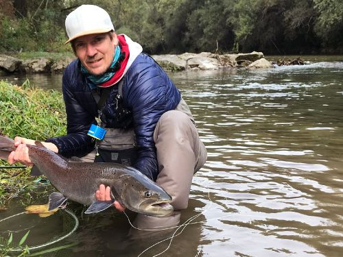 Danube Salmon aka. Huchen is almost gone from the Danube river!. The last time I watched a TV show on the Discovery Channel and the host was Jeremy Wade. The show talked about the disappearance of the huchen population in the Danube river. The construc...