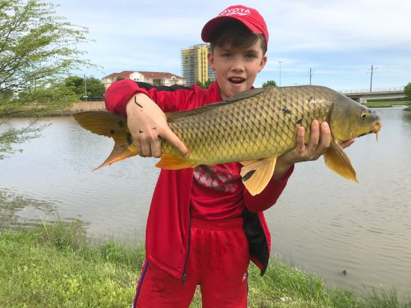 I've taught my son everything I know. My work here is done. Caught in < 1 foot of water on my special carp hares ear nymph.