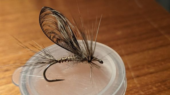 Oregami Winged Fly.....tail, wing, hackle all from Coq De Leon
